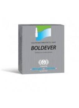 Boldever amp.